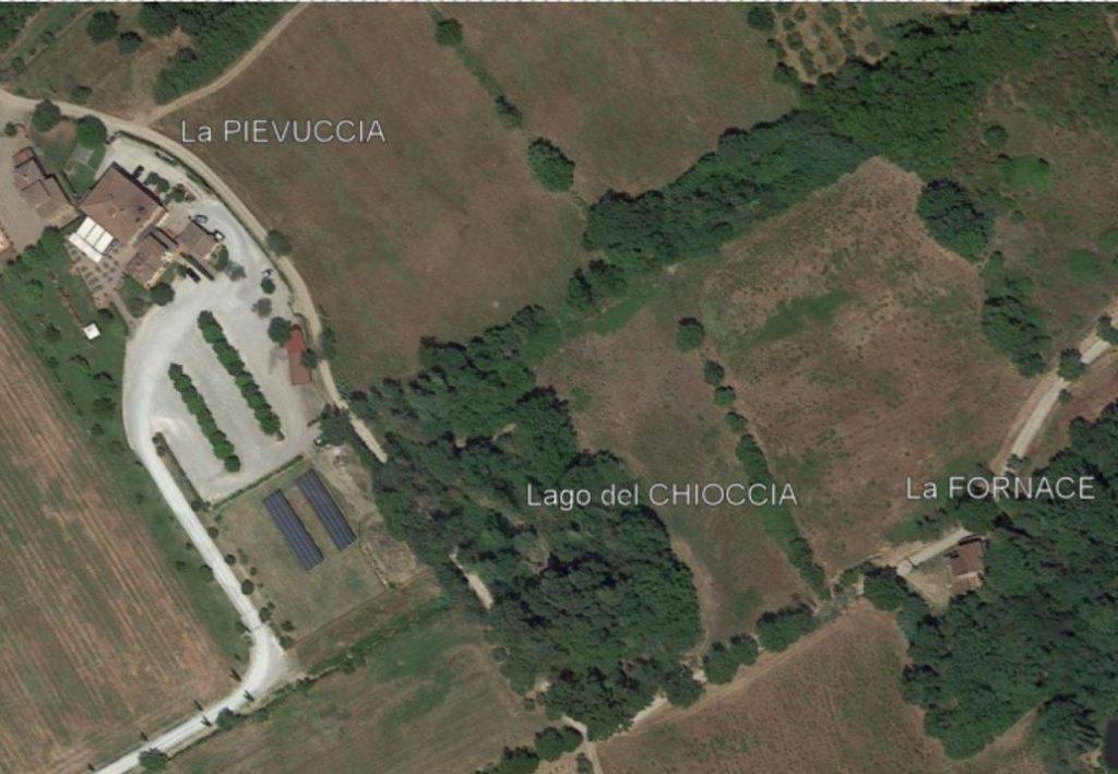 Il boschetto è il Lago del Chioccia